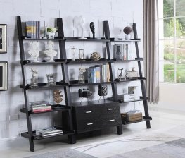 Contemporary Capp. Leaning Bookcase