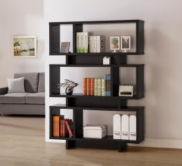 Contemporary Capp. Geometric Bookcase